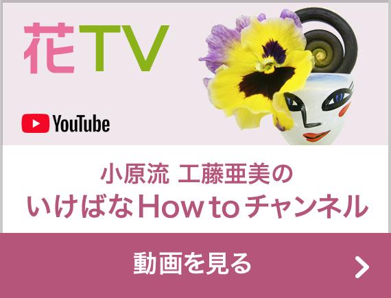 YouTube 花TV 小原流工藤亜美のいけばなHOW TOチャンネル